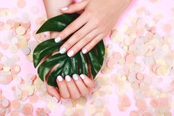 Stylish trendy female pink and blue manicure. With tripical olant - monsterra. Beautiful young woman's hands on orange pastel background with festive multicolored confetti.