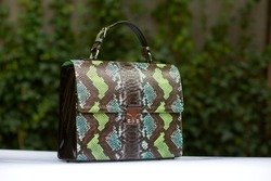 Stylish woman s handbag with immitation of snake s skin, was made in blue,green and brown colors. It has a little handles. Stands on a white surface on a green background.