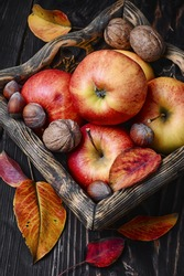 Stylish wooden basket with autumn harvest, red apples