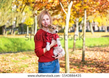 Stylish, young woman tenderly hugs her puppy Jack Russell Terrier in the autumn park, mood. Romantic day with a pet. Pet Dog wears a sweater, outdoors or outdoors.