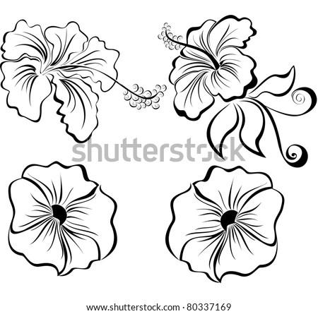 stylized black and white flowers isolated on white background