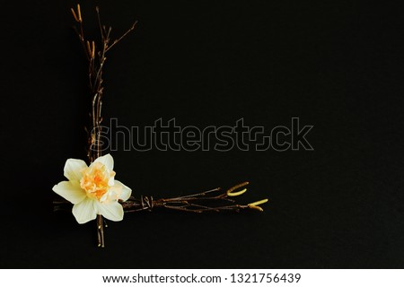 Stylized letter «L» from birch twigs decorated with delicate narcissus on black background. Play of light and shadow. Symbolic concept for Mother's day, birthday, wedding day, lovers day. Minimal styl #1321756439