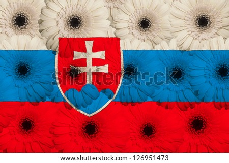stylized national flag of slovakia with gerbera daisy flowers as concept and symbol of love, beauty, innocence, and positive emotions