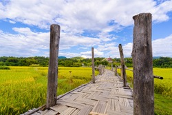 Su Tong Pae Bridge bamboo bridge is a path to walk into the forest and temple the way there are rice plants with a bright sky as a background landmarl in Mae Hong Son, THAILAND
