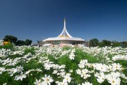 Suan Luang Rama IX (Rama 9) public park in sunny day with beautiful clear blue sky (Bangkok, Thailand)