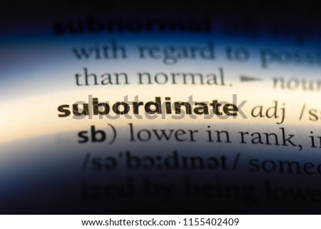 subordinate word in a dictionary. subordinate concept.