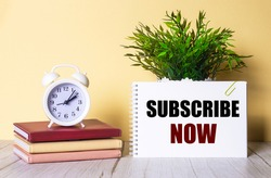 SUBSCRIBE NOW is written in a notebook next to a green plant and a white alarm clock, which stands on colorful diaries.