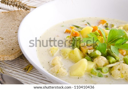 substantial vegetable soup