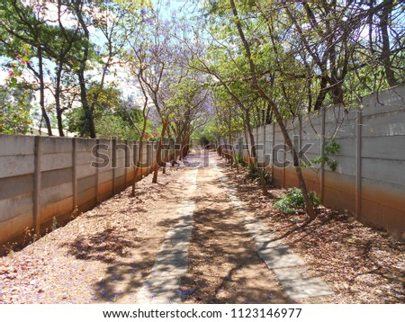 Suburban  driveway to a house #1123146977