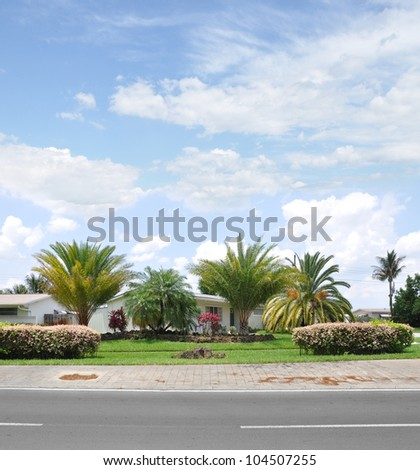 Suburban Landscaped Home with Flower Bushes and Palm Tree Sidewalk Blacktop Street Residential Neighborhood