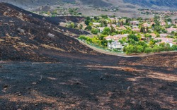 Suburban Neighborhood after Wildfire Burned Hillside Right up to Edge of Homes