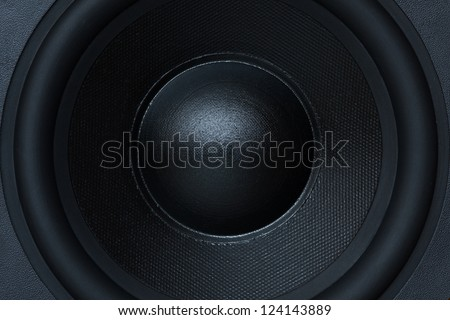 Subwoofer element close-up