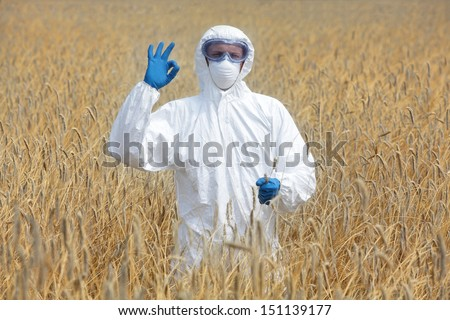 success - agricultural engineer with ok gesture on field of crops