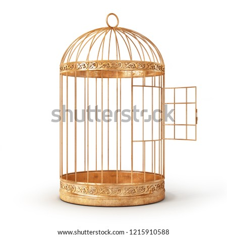 Success concept. Open bird's cell isolation on a white background. 3d illustration Foto stock ©