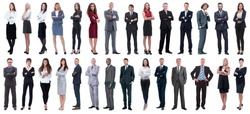successful business people isolated on white background