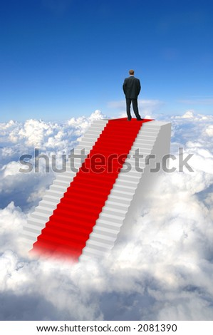Successful male businessman pictured on top of the world