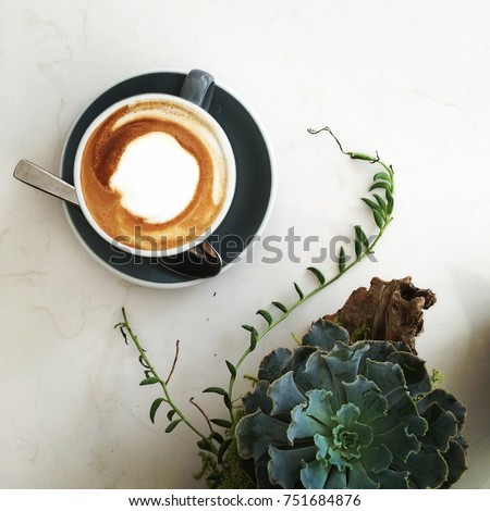 Succulent and Coffee Latte Flatlay, on a White Marble Background. Table scene in a cafe.
