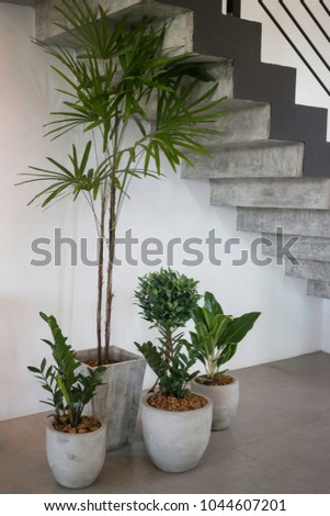 Succulent plant pots decorated on the floor, stock photo #1044607201