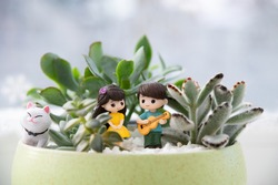 Succulents and mini-sculptures cat, of a girl and a boy in love. The boy performs a musical composition for his beloved on the guitar.  Valentine's day. International cat day