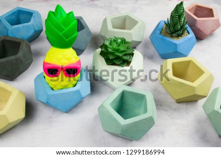 succulents potted in concrete pots and funny pineapple in glasses  #1299186994