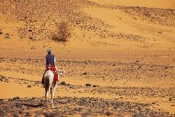 Sudanese men ride camel