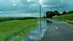Sugar cane field on the side of the road flooded after heavy rainfall in tropical North Queensland Australia