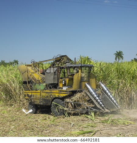 sugar cane harvest, Sancti Spiritus Province, Cuba - stock photo