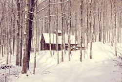 sugar shack in snowy forest