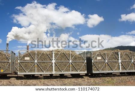 sugarcane hauling bins in the Cairns area Australia