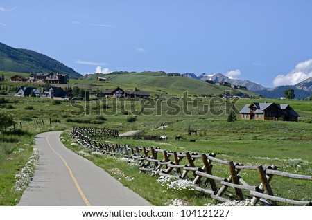 Summer along a bike path in Crested Butte, Colorado