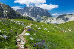 Summer alpine landscape. Hiking path to lake Drakolimni in Pindus mountains, Zagori, Greece.