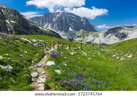 Summer alpine landscape. Hiking path to lake Drakolimni in Pindus mountains, Zagori, Greece. Stockfoto ©