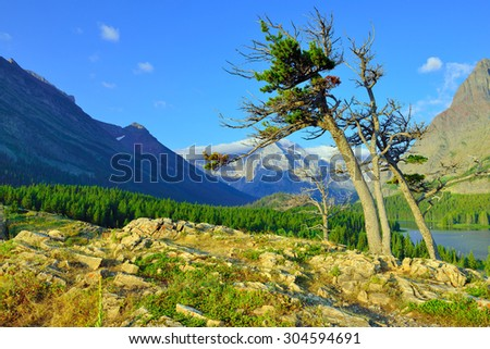 summer alpine landscape of the Glacier National Park