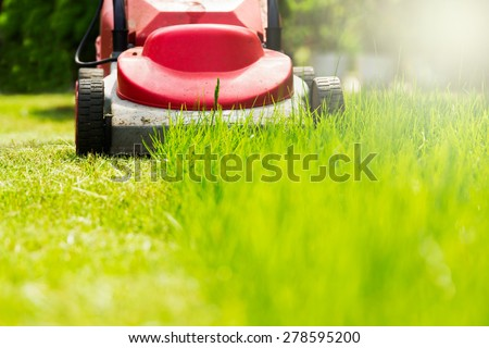 Summer and spring season sunny lawn mowing in the garden. #278595200