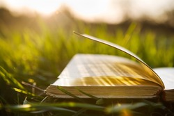Summer backgound with open book and bokeh