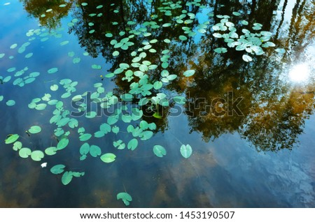 Summer background landscape - reflection in the water with ripples. Trees are reflected. Minimalism, blue and green shades. Place for text. #1453190507