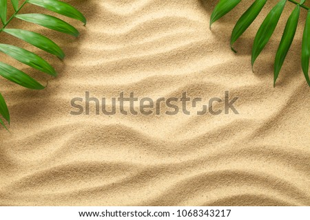 Summer background with green palm leaves. Beach texture. Copy space. Top view #1068343217
