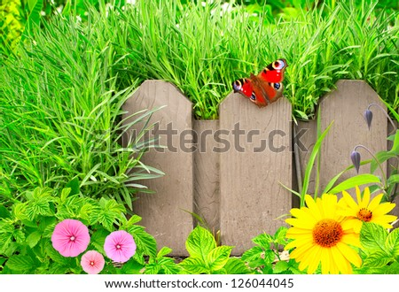 Summer background with old wooden fence, butterfly and green grass