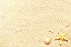 Summer background with sand and sea shells on the beach.. Summer concept.