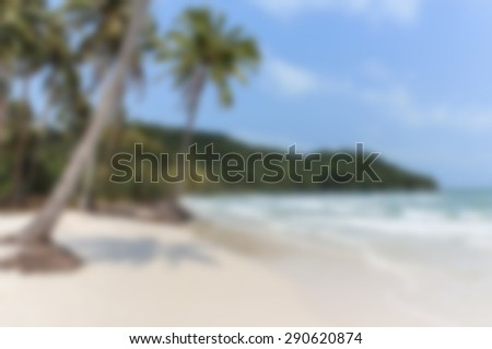 summer beach background with palm trees - soft focus
