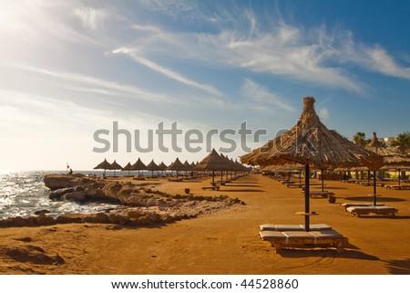 Summer beach under morning sun in Egypt Sharm el-sheikh Morning - plank beds and umrellas