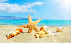 Summer beach with starfish and shells. background sea