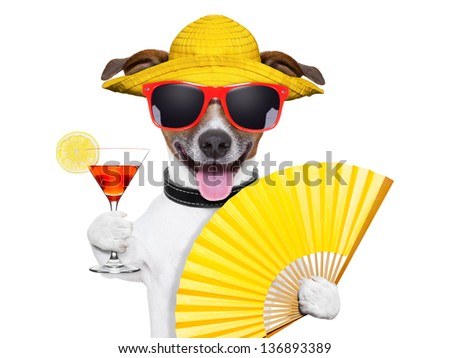 summer cocktail dog cooling off with hand fan