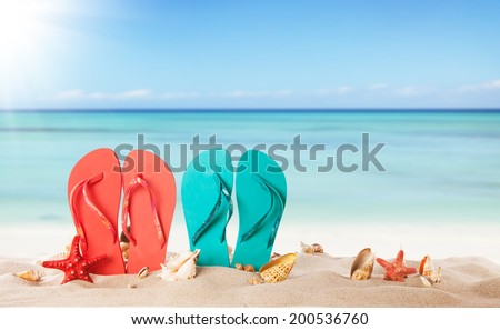 Summer concept with sandy beach, shells and colored sandals - Shutterstock ID 200536760