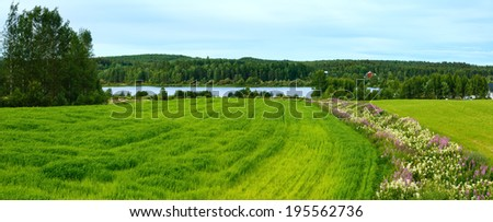 Summer country landscape with flowers on field and river (Sweden).