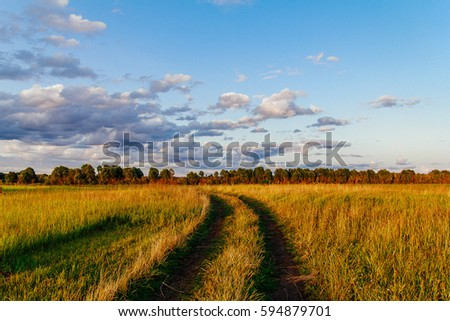 Summer country road and fields on the background of the blue beautiful cloudy sky and russian forest.