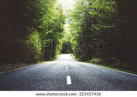 Summer Country Road With Trees Beside Concept #321457436