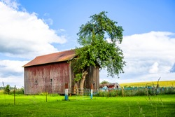 Summer countryside landscape with farmland and a large wooden shed with peeling red paint for storing mowed hay stands at the corner of a wide fenced meadow on the hillside awaiting haymaking