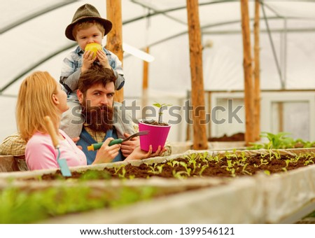 summer cultivation. cultivation ground in summer. family do cultivation in summer greenhouse. summer greenhouse cultivation. making the world green