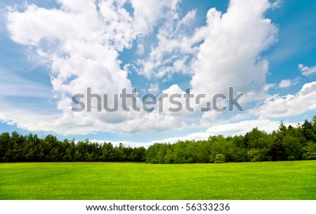 Summer day with blue sky,trees and grass